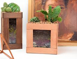 cactus home decor summer trend diy faux succulent u0026 cactus home décor