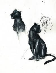 25 trending jungle book bagheera ideas on pinterest panther