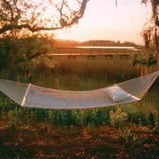 original polyester hammock by pawleys island dfohome