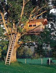 Cool Tree Houses 1531 Best Tree Houses Images On Pinterest Treehouses Tiny