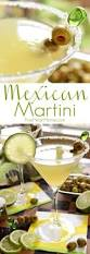 martini rock best 25 mexican martini recipe ideas on pinterest margarita on