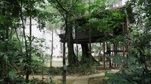 eco jungle tree houses thailand u2013 jungle house