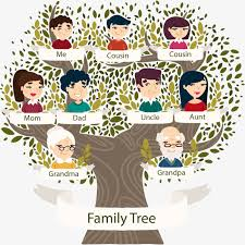 a family tree vector material family portrait family tree png