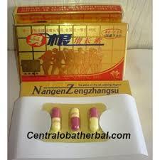 obat kuat nangen zengzhangsu central obat herbal malang