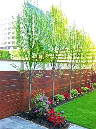 Affordable Backyard Landscaping Ideas Pictures Backyard Landscaping Ideas On A Budget Small Backyard