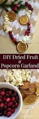 diy dried fruit and popcorn garland