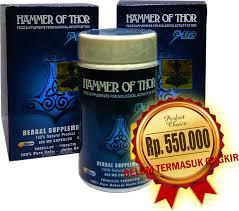 harga hammer of thor forex di apotik archives hammer of thor asli