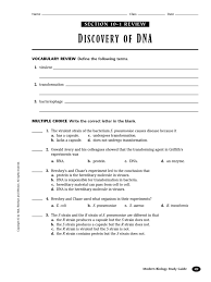 Dna Structure And Replication Worksheet Key Dna Protein Synthesis Review Translation Biology Dna