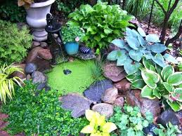 Container Water Garden Ideas Container Water Garden Kit Best Container Water Gardens Ideas On