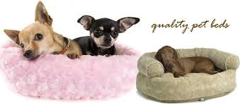 what is the best dog bed for your dog dog beds