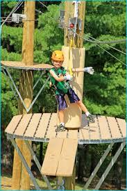 zipline for backyard gogo papa com