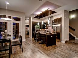 Kitchen Living Room Ideas by Amusing 40 Open Concept Kitchen Living Room Ideas Design Ideas Of