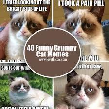 Memes Of Grumpy Cat - 40 funny grumpy cat memes