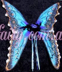 huge butterfly wings black blue fairies australia fairy magic