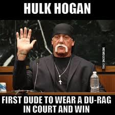 Wrestlemania Meme - 26 best hulk hogan memes of all time