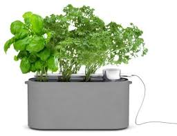 self watering planters effective