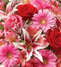 Flowers Of The Month List - gift of the month flower clubs 1 800 flowers com