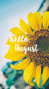 happy halloween quotes white background hello august sunflower bright happy background august 2016
