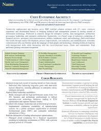 resume for business development graphical resume samples resume jar