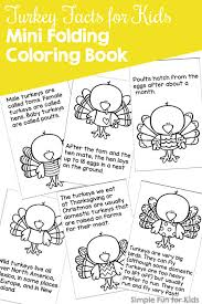 turkey facts for mini folding coloring book printable