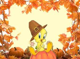 wallpaper tweety thanksgiving wallpapersafari