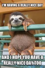 Funny Sloth Memes - 26 sloth meme sloth animal and memes