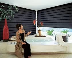 Roller Shades For Windows Designs Bedroom Great Motorized Roller Shades Nyc About Electric Blinds