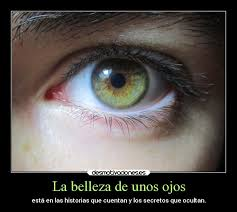 imagenes de ojos con frases bonitas la belleza de unos ojos desmotivaciones