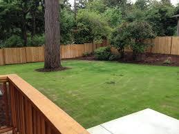 exterior pest control birmingham al enjoy a pest free backyard