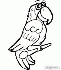 cartoon parrot pictures kids coloring