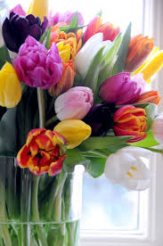 Spring Flower Bouquets - 351 best tulipanes images on pinterest flowers flower