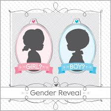 gender reveal party theme baby shower neutral build a party