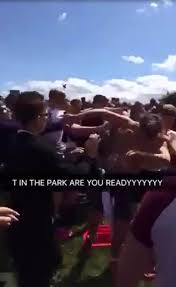 brawl erupt between festival cers hours after they