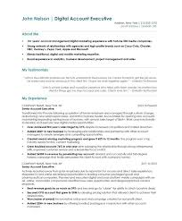 Account Manager Resume Sample by Account Executive Free Resume Samples Blue Sky Resumes