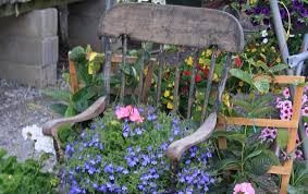 spring u0026 summer at lori u0027s garden center