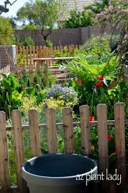 260 best vegetable gardening images on pinterest desert