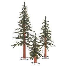 trees 3 ft target