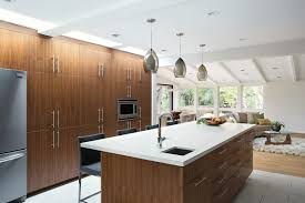 contemporary kitchen cabinets bay area