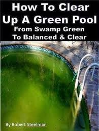 how to get rid of black algae spots in your pool diy swimming