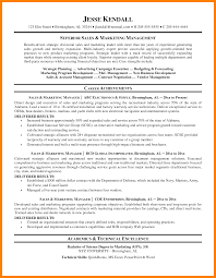 sample resume executive manager territory marketing manager resume samples velvet jobs executive