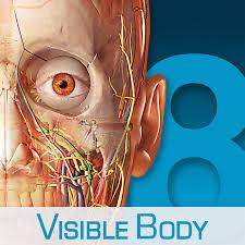 Netter Atlas Of Human Anatomy Online Human Anatomy Atlas U2013 3d Anatomical Model Of The Human Body On The