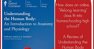 Anatomy And Physiology Introduction To The Human Body Adventures With Jude The Great Courses Understanding The Human