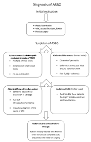 bologna guidelines for diagnosis and management of adhesive small