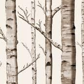 birch bark fabric wallpaper u0026 gift wrap spoonflower