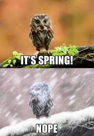 Colorado Weather Meme - here are 11 jokes about denver that are actually funny