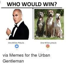 Pitbull Meme - who would win one million pitbulls one million pitbulls via memes