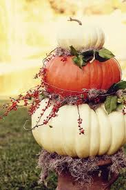 pumpkin topiary pumpkin topiary pictures photos and images for