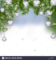 card green fir branches with silver balls in the real stock