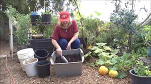 Urban Gardening Tips Video No Compost Piles For Me Dump Plant Now Back To Eden