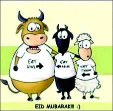Eid Memes - 17 of the most hilarious eidul azha memes oddmenot